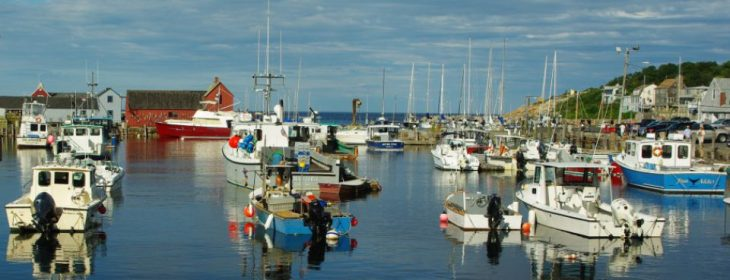 cropped-cropped-rockport-aug-14-031-nice.jpg